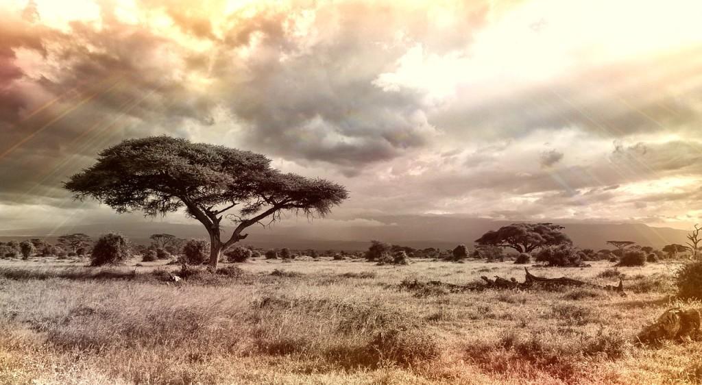 Abenteuerland Afrika